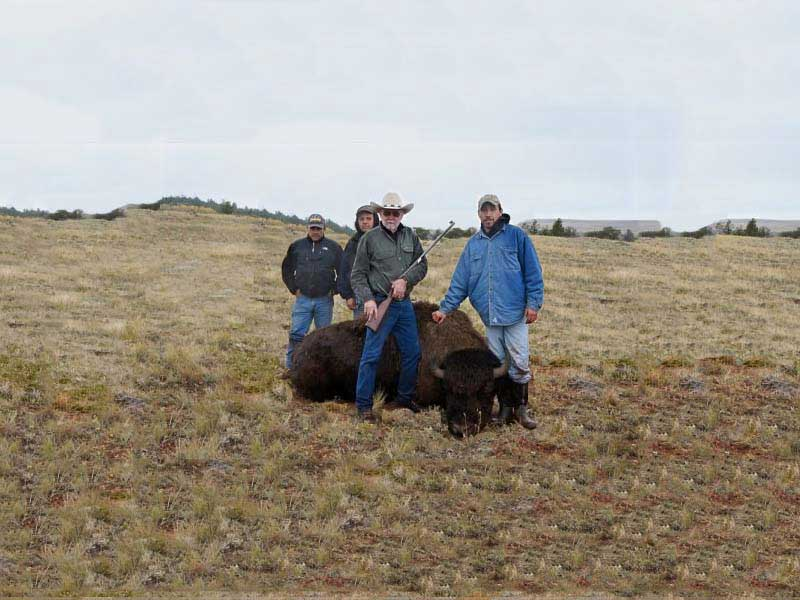 bufflo-hunting-in-montana-006