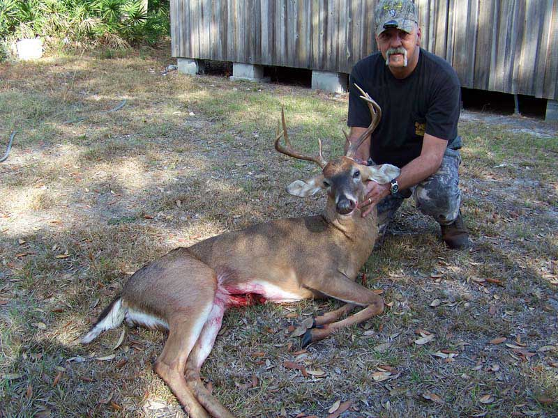 hunting-in-florida-whitetail-deer-hunting-005