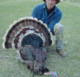 Merriams Turkey Hunting