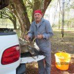 Deer Hunting - Hunting in Florida